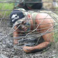 HB Net crawl (2)